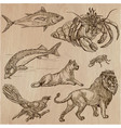 animals - an hand drawn pack line art vector image vector image