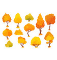 autumn trees shrubs bushes with crown of vector image vector image