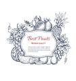 Best fruits harvest sketch poster vector image vector image