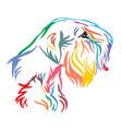 colorful decorative portrait of dog sealyham vector image vector image