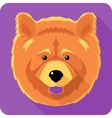 dog chow-chow icon flat design vector image vector image