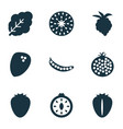 food icons set with coconut peas strawberry and vector image vector image