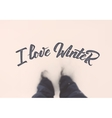 I love winter calligraphic quotation on blurred vector image vector image