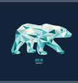 polygon bear vector image vector image