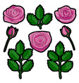 rose embroidery patch set vector image vector image