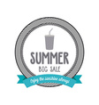 Summer Label vector image