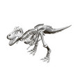 dinosaur skeleton isometric view 3d vector image