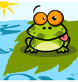 Frog Cartoon Character vector image