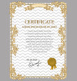Gold Certificate of Achievement vector image