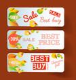 seasonal floral sale horizontal banners vector image