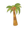 The fan palm