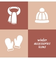 winter accessories icons vector image