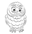 cartoon image of owl vector image vector image