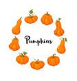 coloful pumpkins set vector image