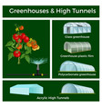 greenhouses and high tunnels set vector image