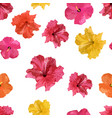 hibiscus flower tropical flowers seamless pattern vector image