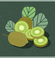 kiwi fruit poster packaging whole sliced leaves vector image