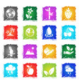 nature web icons vector image vector image
