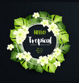 tropical beach party circle banner on the dark vector image vector image