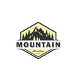 mountain logo vintage emblem vector image