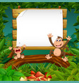 nature forest view with the wooden board blank vector image