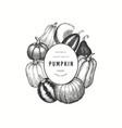 pumpkin color design template hand drawn vector image vector image