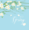 a gentle spring banner with flowering tree vector image