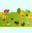 animal farm collection hens vector image