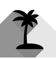coconut palm tree sign black icon with vector image vector image