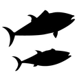 fish on white background vector image vector image