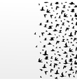 flight of birds vector image vector image