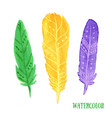 hand painted watercolor feathers closeup isolated vector image