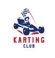 kart with finish flag design template vector image vector image