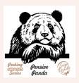 peeking pensive panda - funny panda out vector image vector image