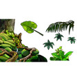 set of elements of cartoon plants of leaves of vector image