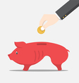Skinny pig money box vector image