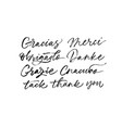 thank you phrases in different languages vector image