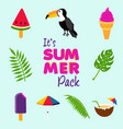 tropical summer beach decoration icon set vector image vector image
