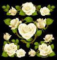 white rose design elements vector image