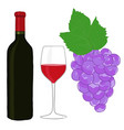 bottle red wine glass and grape sketch vector image