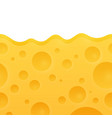 texture of cheese vector image vector image