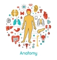 Anatomy Thin Line Icons Set with Human vector image