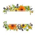 floral design horizontal card design gerbera vector image