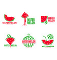 graphic red and green watermelon logo templates vector image vector image