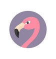 pink flamingo head face with long neck round vector image vector image