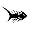 skeleton of fish vector image