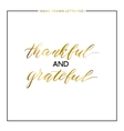 Thankful and grateful gold lettering isolated on vector image vector image