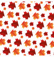 autumn leaves foliage white background pattern vector image