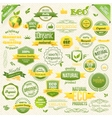 Collection Organic Food Eco Bio Labels vector image vector image