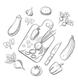 Cooking a vegetable salad sketch icons vector image vector image